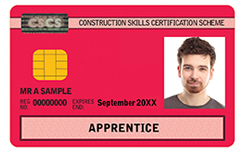 20xx-apprentice-card