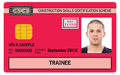 20xx-trainee-card